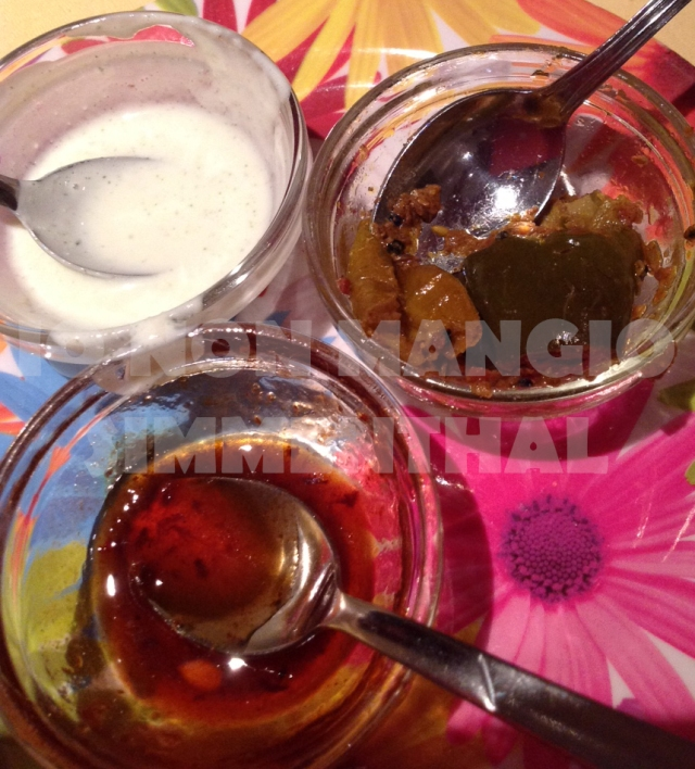 Le immancabili salsine: yogurt e menta, piccante alle verdure e di tamarindo